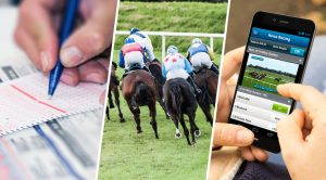 Your Horse Racing Software Could Be Your Ticket To Financial Freedom